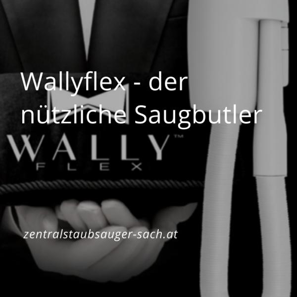 Wallyflex-der-nu-tzliche-Saugbutler